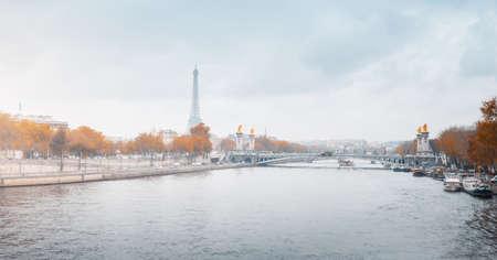 Alexandre III bridge with Eiffel Tower, France 写真素材 - 155625240