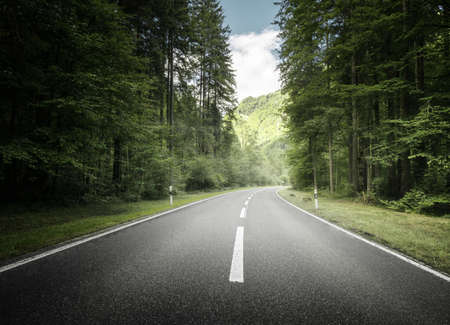 road in mountain forest, Switzerland 写真素材 - 155556960