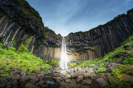 Svartifoss, Black Waterfall, Iceland 写真素材