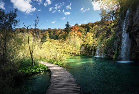 Waterfall in forest, Plitvice, Croatia Foto de archivo