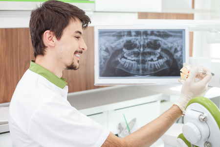 artificial teeth: Cheerful young dentist is working in his office. He is sitting near computer with x-ray picture of teeth on screen. The man is holding artificial jaw and looking at it with joy. He is smiling Stock Photo