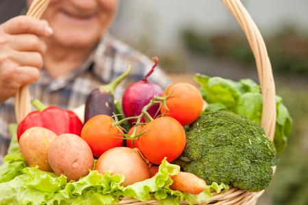 agricultor: Cierre para arriba del hombre viejo con una cesta de verduras saludables. El agricultor está de pie y sonriente. Centrarse en la canasta