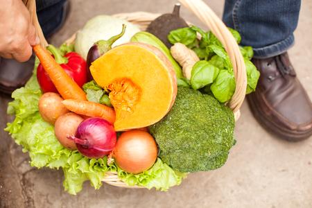 hojas antiguas: Cierre para arriba de los hombres brazo del granjero mayor que toma la zanahoria de la cesta de verduras. El hombre est� sentado en el jard�n