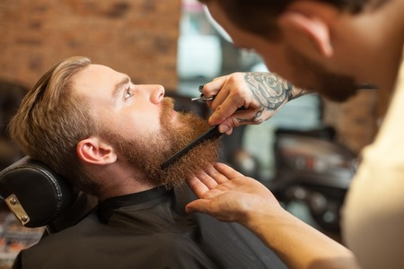 barber: Skillful male barber is combing and cutting the beard of the man. He is standing and holding scissors. The hipster is sitting in chair and looking forward with seriousness