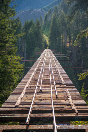 forest railway: Famous unfinished railway bridge with forest and mountains in Washington
