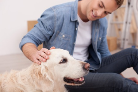 teaching adult: Handsome man is playing with his dog. He is sitting and smiling. The man is stroking the pet with joy