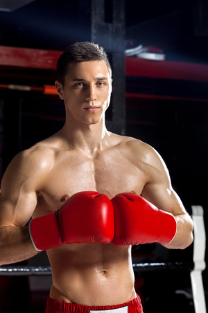 seriousness: I am ready to fight. Portrait of attractive boxer standing and joining fists in gloves together. He is looking at camera with seriousness