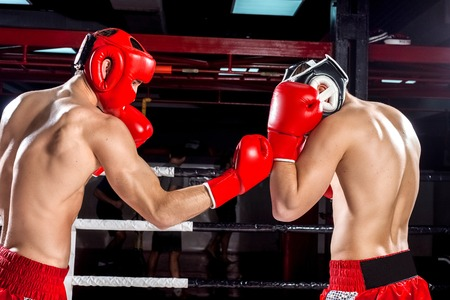 efforts: Strong boxers are sparing with each other. They are standing and boxing with efforts Stock Photo