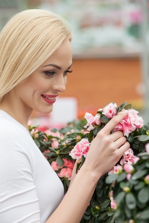 feasting: Attractive young girl is feasting her eyes on the flowers in greenhouse. She is touching the petals and smiling Stock Photo