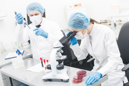 researchers: Cheerful two researchers are testing samples in lab with concentration. Young woman is sitting and looking at the microscope. Man is standing and holding a pipette