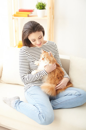stroking: Beautiful young woman is holding a cat and stroking it with love. She is sitting on sofa and smiling