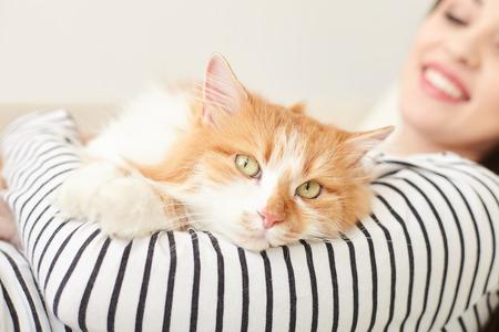 아름 다운 소녀 고양이 집에 휴식을 가지고있다. 그녀는 그것을 잡고 웃 고. 휴식과 함께 누워있는 동물에 초점을 맞 춥니 다.