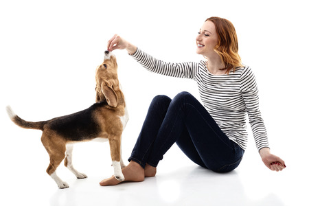Pretty girl is feeding her dog. She is touching hand to its mouth. The lady is sitting and smiling. Isolated