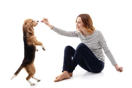 levantandose: Mujer joven linda que est� entrenando a un perro. Ella est� levantando la mano a su cara y sonriendo. La mascota se est� levantando sobre su alimentaci�n. Aislado