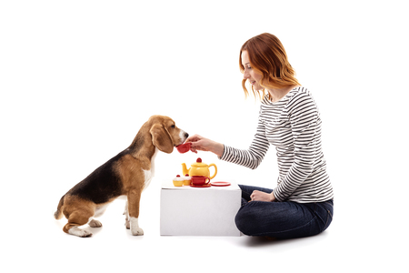 beagle puppy: Pretty young woman is having tea party with her pet. She is giving a cup to dog. The lady is sitting and smiling. Isolated