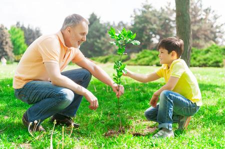 El muchacho lindo está ayudando a su abuelo para plantar un árbol pequeño. Ellos son la celebración de un árbol joven y sonriente