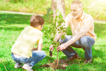 Senior grandfather and his grandson are planting small tree into the ground. They are sitting in park and looking at each other with joy. The boy and man are smiling