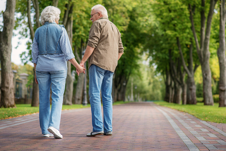 Cute old married couple is walking in park with pleasure. They are holding hands and talking. Focus on their back