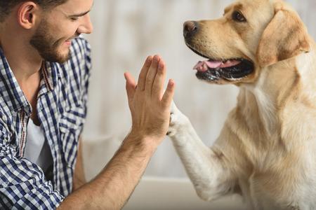 man holding dog's paw on a sofa, close up Standard-Bild