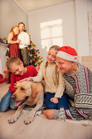 Children and grandfather are sitting on floor and stroking dog. Father and mother are looking at them with happiness and smiling. They are standing near Christmas tree and embracing Zdjęcie Seryjne