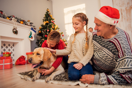 Happy children are playing with dog near Christmas tree. They are sitting on flooring and smiling. Grandfather is embracing girl with love