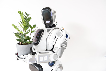 Concept synthetic and organic. Big android is showing his houseplant while looking at camera with positivity. Isolated with copy space in the right side