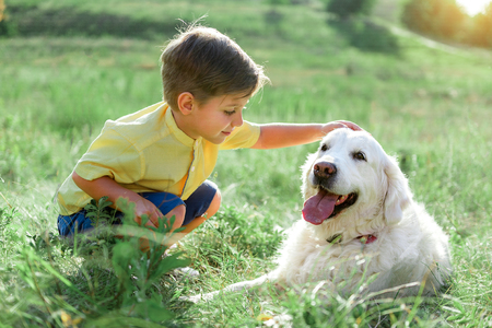 Cute child expressing his gentleness to dog