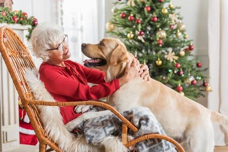 Dankbaar zijn. De blije oude vrouw koestert haar hond terwijl het rusten in grote comfortabele schommelstoel. Ze kijken elkaar aan met een kerstboom op de achtergrond