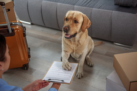 Glad dog making signature on paper