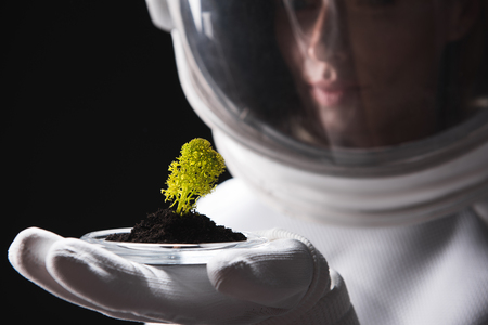 Close-up of hand with green plant of experienced spacewoman wearing helmet and protective suit who is standing and expressing interest while discovering other form of life. Selective focus. Isolated
