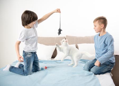 可愛いキティ寝具の上で休んでいる幸せな少年たち。彼らは美しいペットにネズミを見せている 写真素材