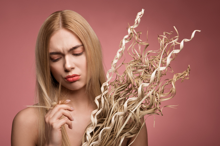 Portrait of upset woman holding bundle of dried grass and looking at her damaged tips of locks. Isolated on rose background Reklamní fotografie