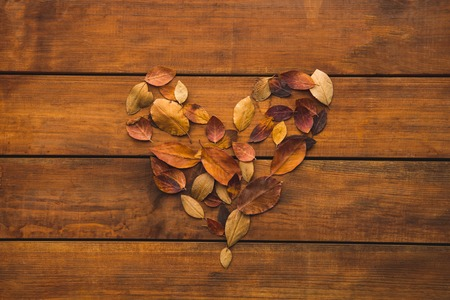 Top view close up heart-shaped herbarium situating on brown background. Romantic concept