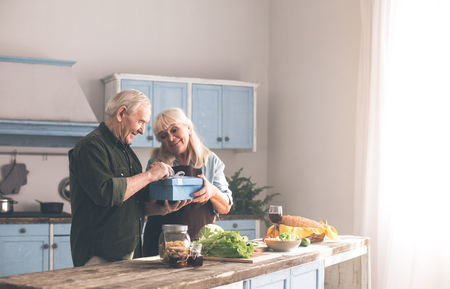 Cheerful old married couple are celebrating anniversary at home. They are standing in kitchen and smiling. Woman is receiving gift from man with gratitude 写真素材