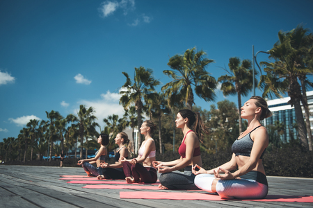 Full length side view serene females practicing yoga while sitting on rugs on open air. Demure friends doing gymnastics concept Stock fotó