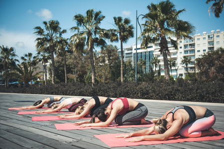 Full length side view serene comrades stretching bodies on rugs outdoor. Demure ladies demonstrating composure during physical exercise concept