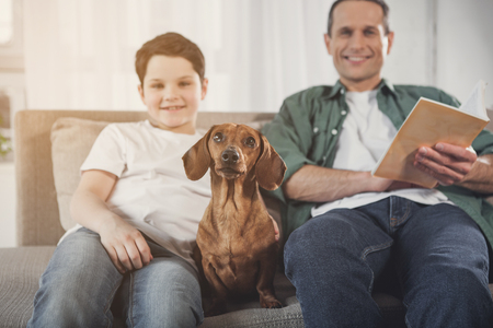 Joyful man is sitting on sofa near his son and smiling. Focus on glad brown dachshund puppy