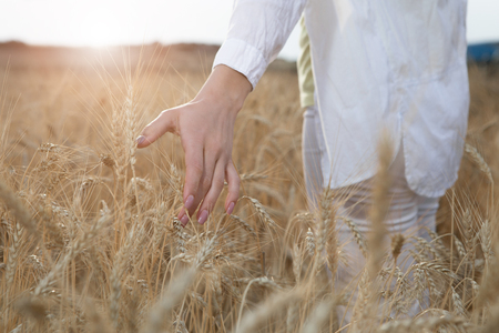 Being in touch with nature. Close up of arm of calm young woman feeling spica of golden barley. Walk on the summer meadow concept  Stock Photo