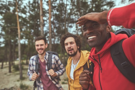 Exploring woods. Waist up portrait of happy man watching out for new path with his friends on background and smiling Stock Photo