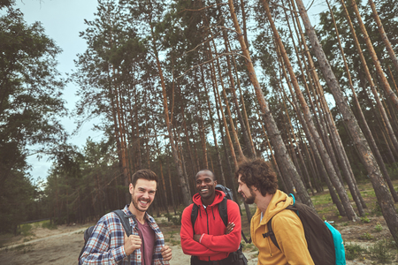 Forest timespanding. Waist up portrait of three smile man standing in woods while sharing splendid stories