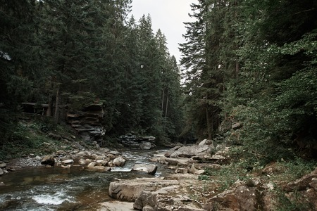 Peaceful nature. Panorama of quiet deep forest with big stones and lovely mountain river 写真素材