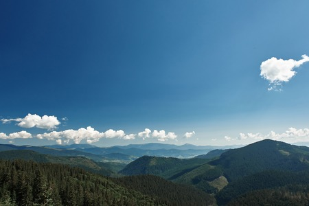 Landscape view of Carpathian mountains covered with coniferous forest