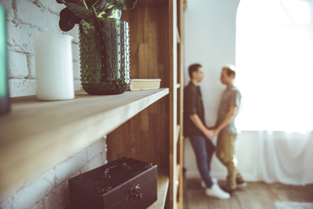 Close up of wooden shelves with houseplant in vase, book and box. Gay couple holding hands while standing near window Stock Photo