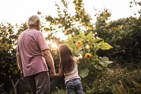 Back view of old man and his little granddaughter. They standing in garden and she pointing finger at flower 写真素材 - 114089916