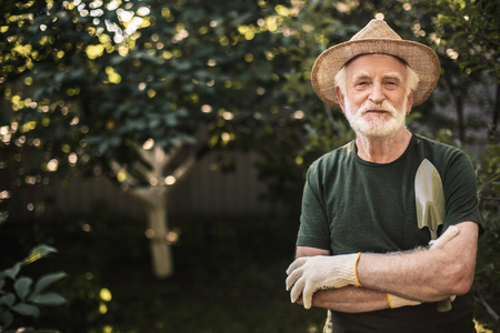 Good job. Senior calm man in flaxen hat standing with his arms crossed and fruit trees on backgroud. Copy space in left side 스톡 콘텐츠 - 114701838