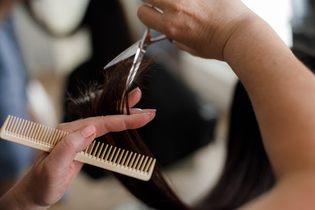 Focus on close up of female stylist trimming woman split ends. Customer is sitting in chair while hairdresser is using comb and scissors Stock Photo