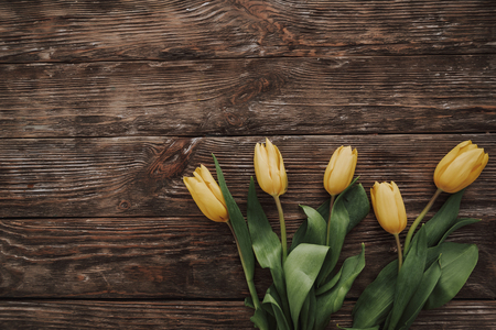 Spring holidays. Top view of decoration from yellow tulips on wooden background. Copy space on left