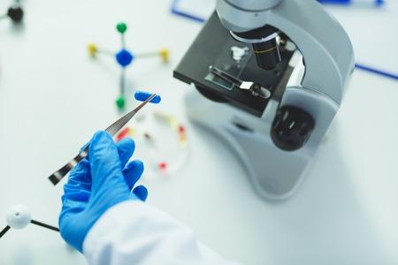 Scientist holding capsule with tweezers in laboratory Stock Photo