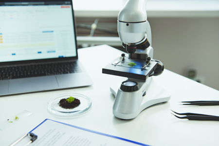 Scientific equipment with examining plant for chemical research on table indoors