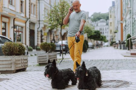 Smiling man walking along street with two black scotch terriers